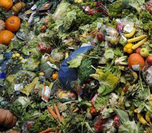 nourriture-mondiale-detruite-poubelle-afrique