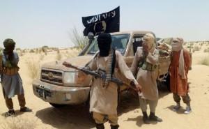 rebelles-islamiste-ansardine