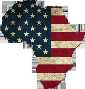 usa-info-afrique.com
