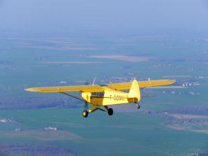 avion-cameroun-porte-disparu