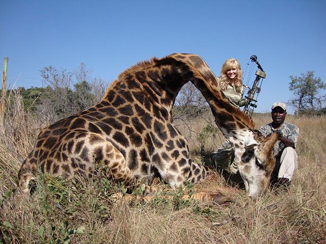 rebecca-francis-girafe-afrique