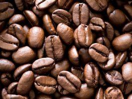 Café en Ethiopie Bosch