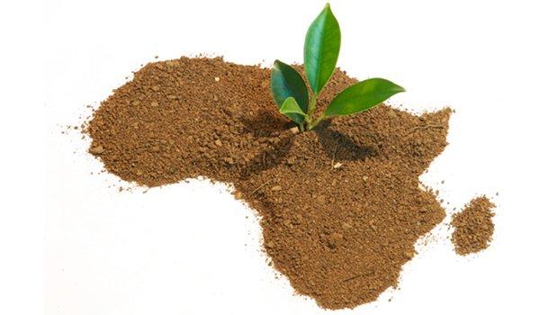 potentiel-agriculture-afrique