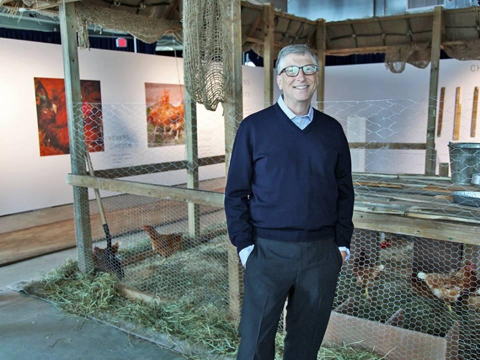 """Résultat de recherche d'images pour """"Bill Gates, pauvreté, informatique, élevage de poules,"""""""