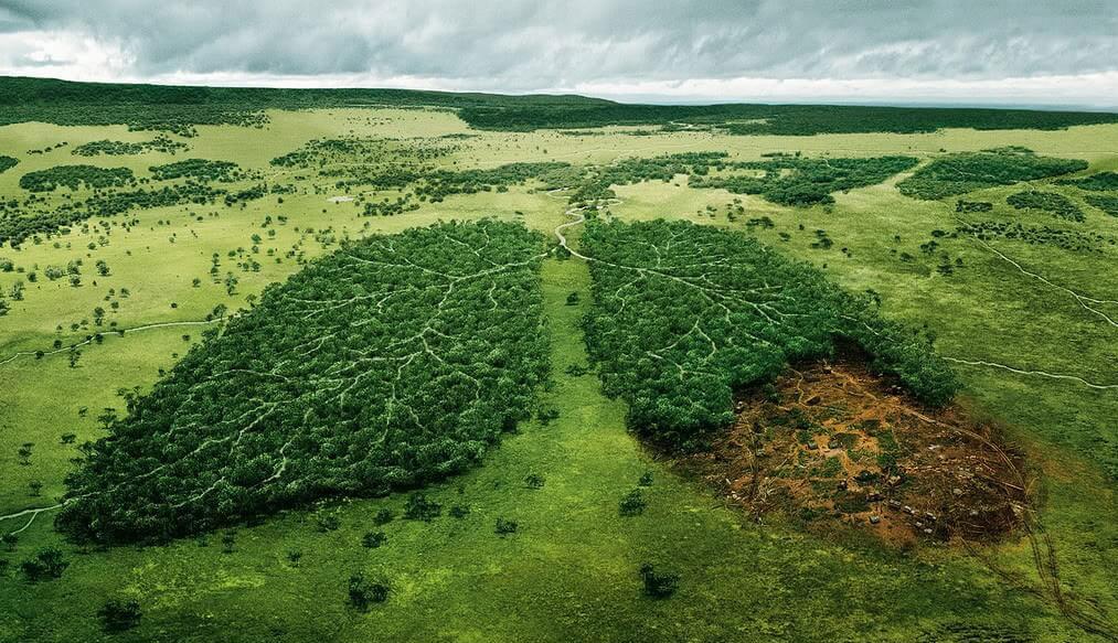 poumons-afrique