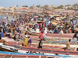 Pêche au Sénégal - Crédit photo Thierry Barbaut