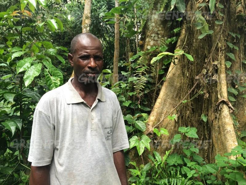 planteur-palmier-huile-cameroun