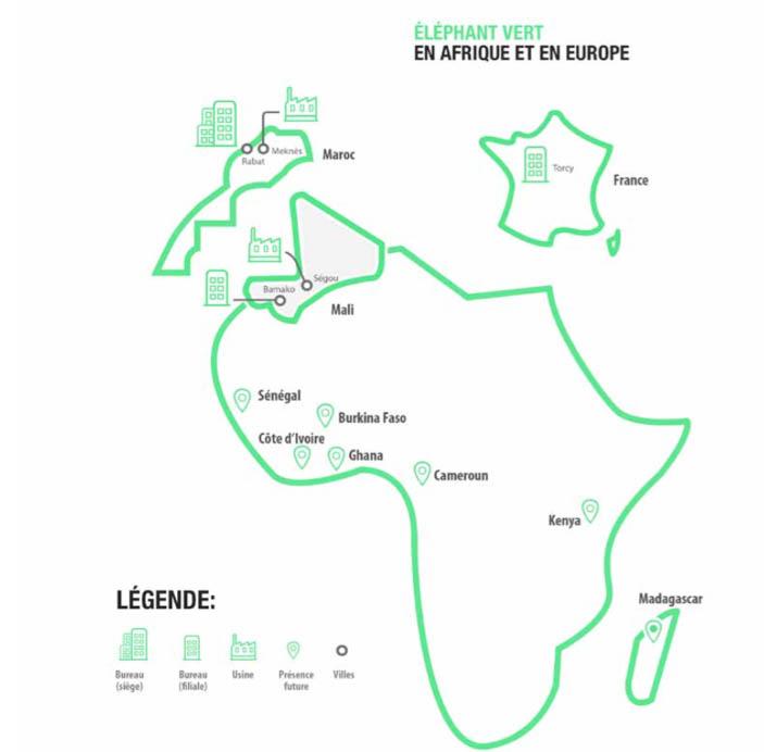 elephant-vert-afrique