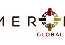 Logo Meroe Global