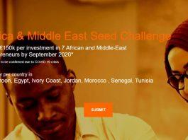 Orange MEA Seed Challenge