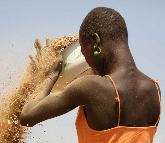 Femmes économie Afrique